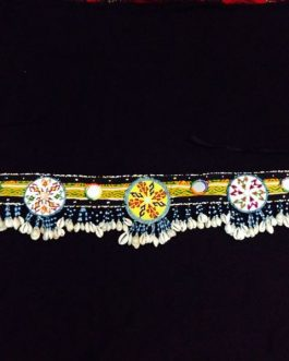 Belly-dance Shell Belt