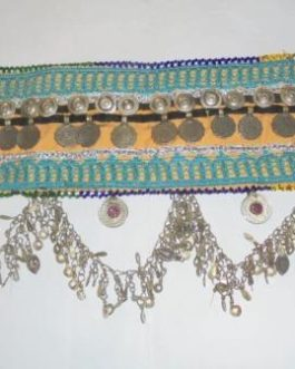 Metal & Coins Made Belt
